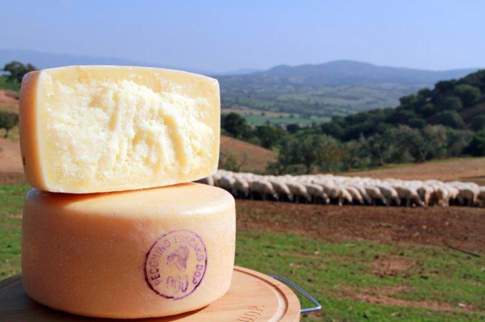Сыр Пекорино на природе