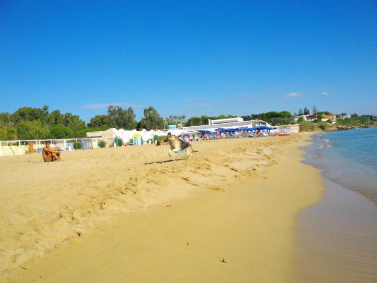 Пляж Аренелла