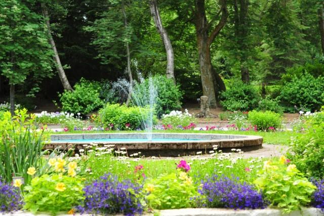 Ботанический сад Акюрейри