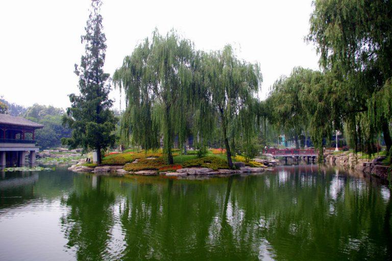 Парк в Чезенатико