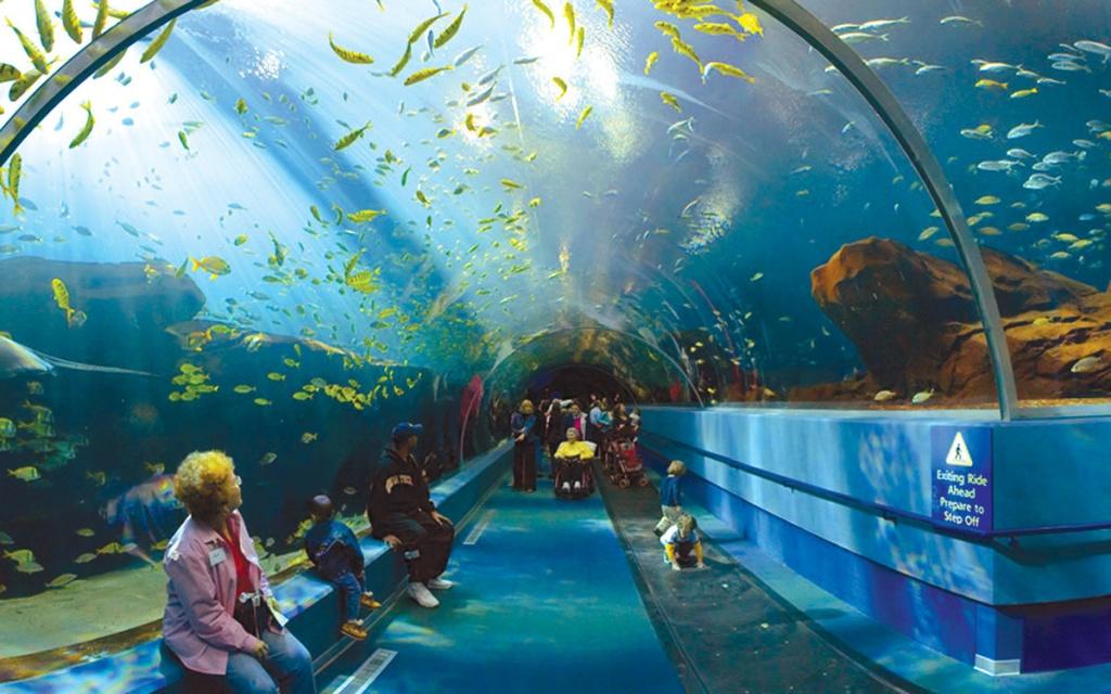 Лондонский аквариум