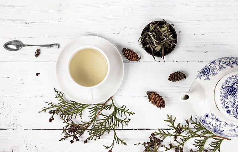 Изготовление белого чая