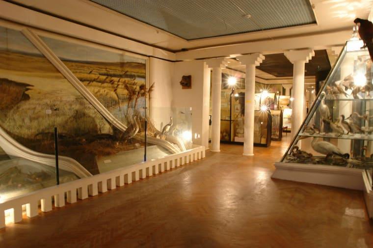 Историко-краеведческий музей имени В.В. Самсонова