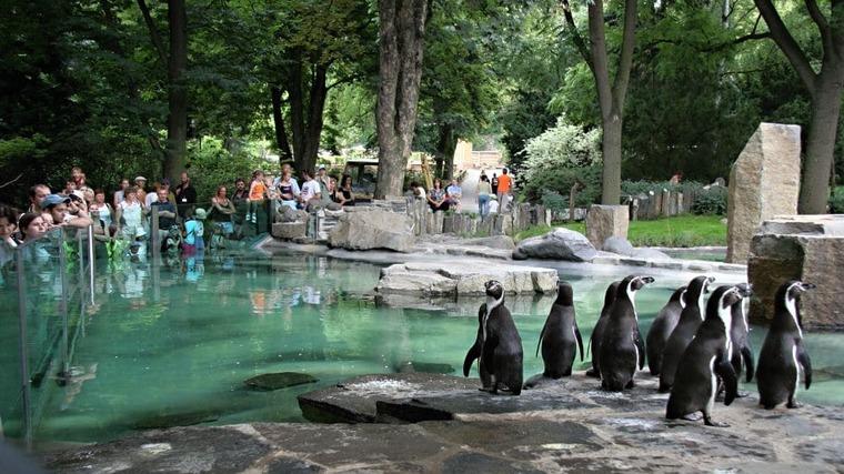 Зоопарк в Чехии