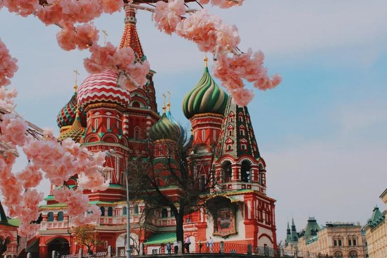 Москва весной, цветение деревьев