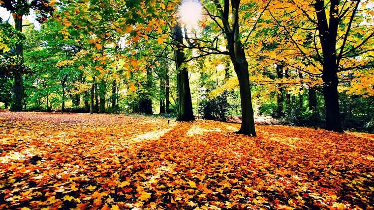 Сербия осенью