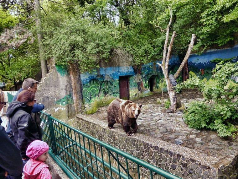Зоопарк в Братиславе